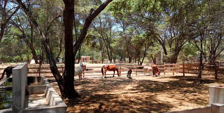 Mini Zoológico Parque Kurt Beer