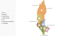 Provincia de Bagua
