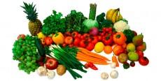 ¿Qué pueden comer los veganos?