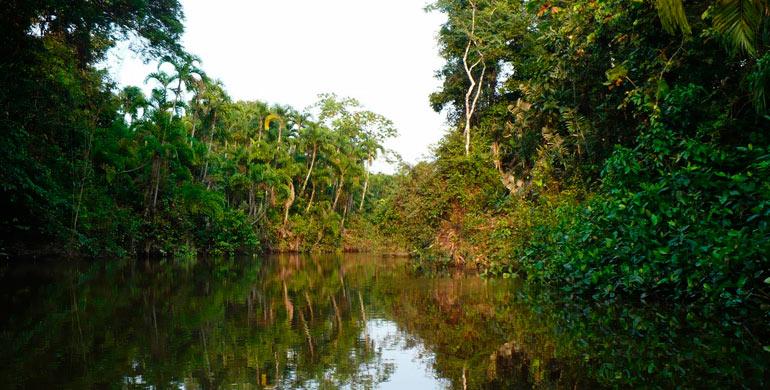 Río Arabela