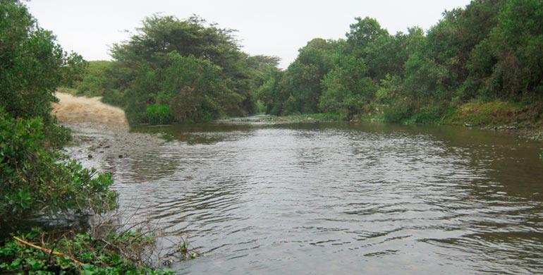 Río Chamán
