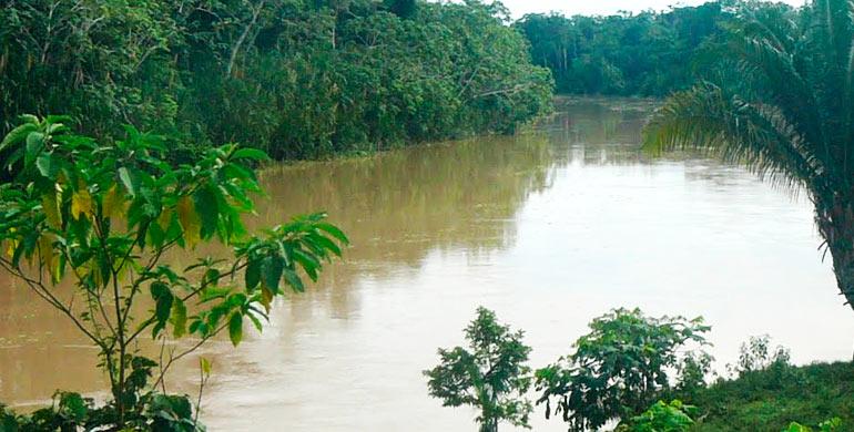 Río Chandless