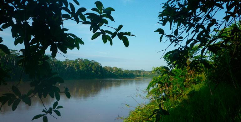 Río Purús