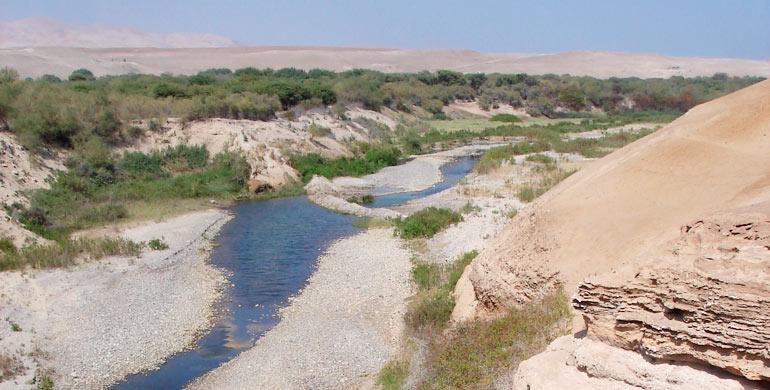 Río Sama (Perú)