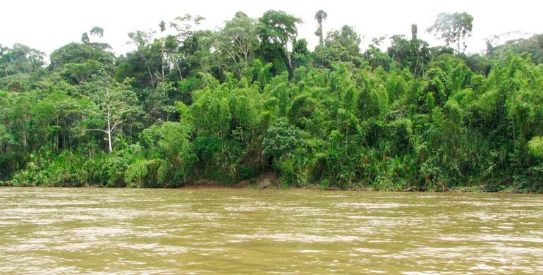 Río Tapiche
