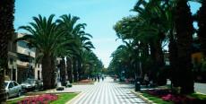 Alameda Bolognesi