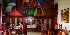 Biblioteca Amazónica