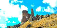 Bosque de Piedra en Sachapite