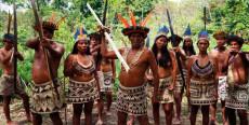 Comunidad nativa Boras de San Andrés