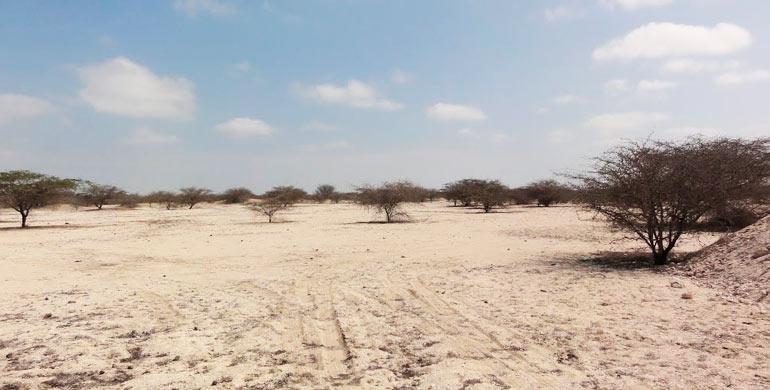 desierto-de-sechura