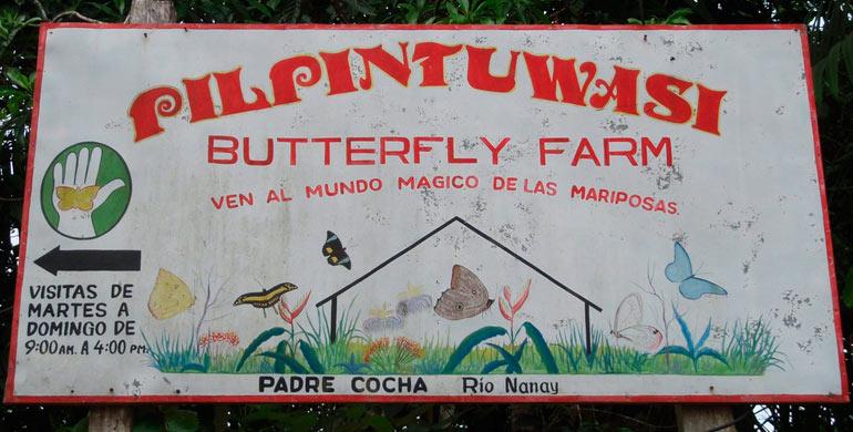 granja-de-mariposas-pilpintuwasi