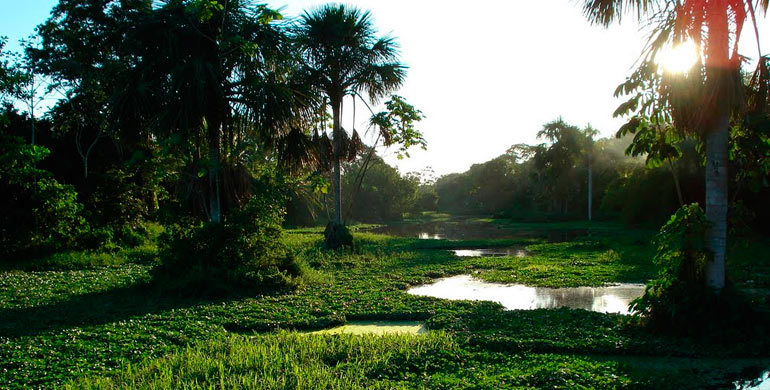 parque-natural-de-pucallpa