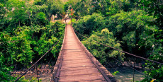 Puente Colgante de Pozuzo