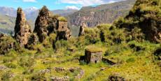 Restos arqueológicos de Goñicutac