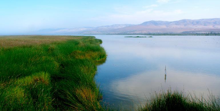 santuario-nacional-lagunas-de-mejia