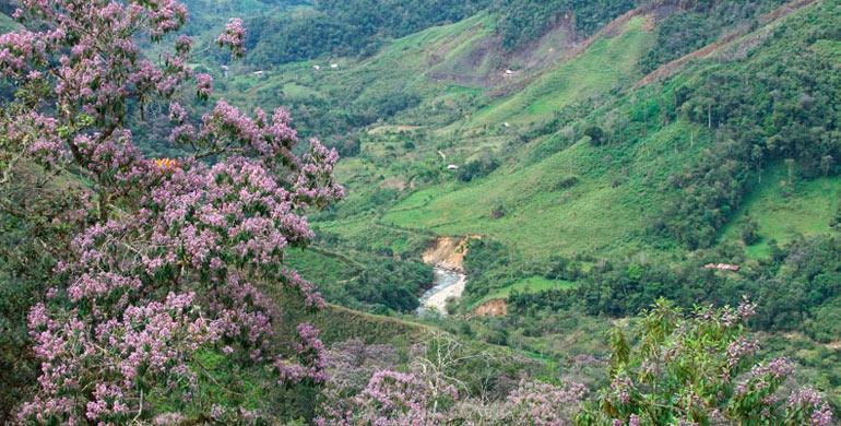 valle-de-los-chilchos