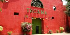 Viña Tacama
