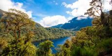 Áreas de Conservación Privada que debes conocer en Perú