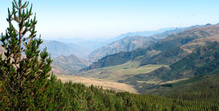 Coto de Caza Sunchubamba