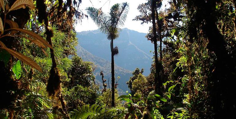 Parque Nacional Otishi