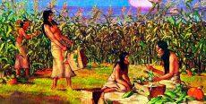 Recursos naturales en el antiguo Perú