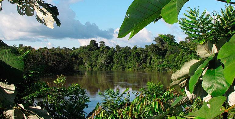 Reserva Nacional Pucacuro