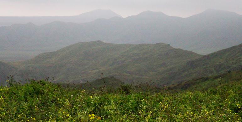 Zona Reservada Lomas de Ancón