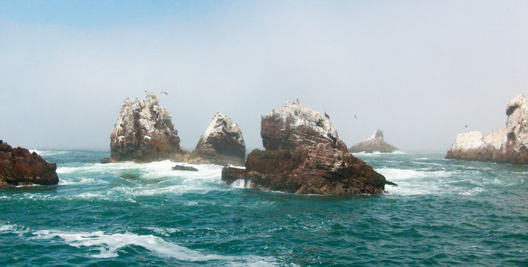 Las islas Palomino