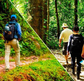Que llevar a la selva – objetos útiles