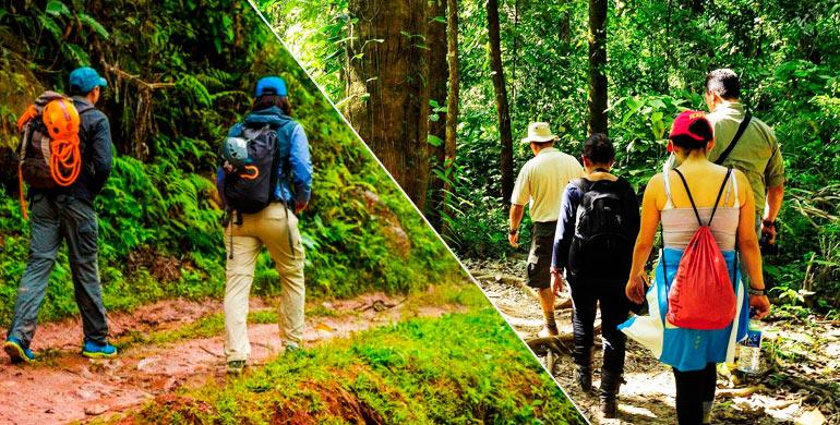 Que llevar a la selva