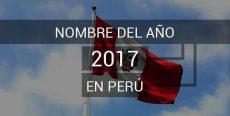 Nombre del año 2017 en Perú «Año del Buen Servicio al Ciudadano»
