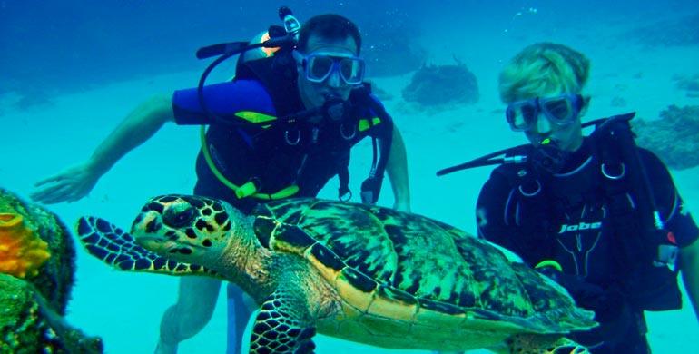 El Ñuro, paraíso para visitar tortugas marinas