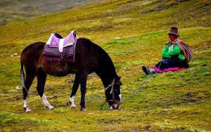 Alquiler de Caballo en la Montaña de 7 Colores