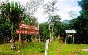 Allpahuayo Mishana, la ruta de la Biodiversidad