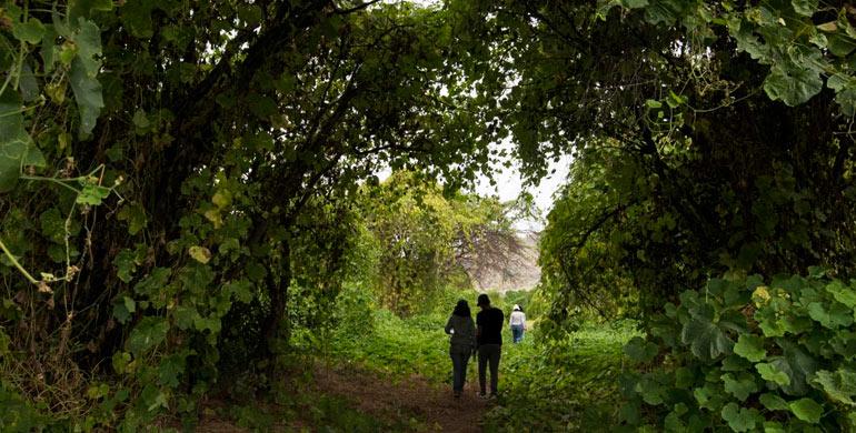 Seis destinos de naturaleza para visitar en Semana Santa