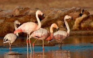 Lagunas de Mejía, aventura en familia