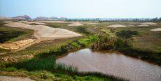 Humedales de Puerto Viejo en Cañete – Lima