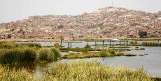 Refugio de Vida Silvestre «Los Pantanos de Villa»