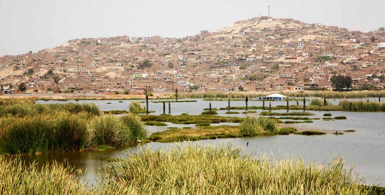 """Refugio de Vida Silvestre """"Los Pantanos de Villa"""""""