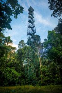 Torre de Dosel